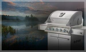 ps_napoleon-grills-main-lex485rsib_1508_d